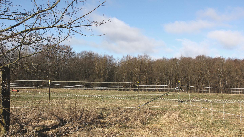 Schutzgebiet Wohldorfer Wald