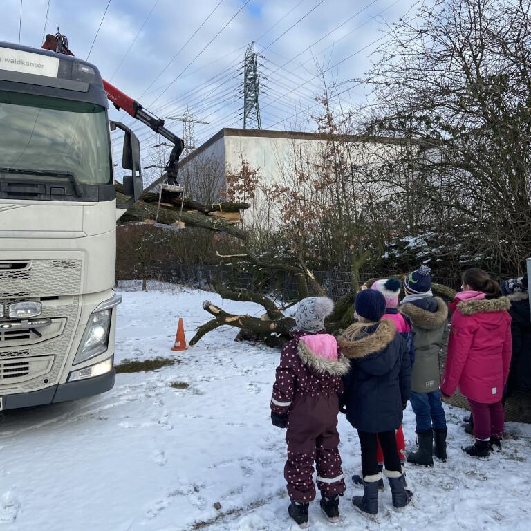 Baumstamm-Aktion Grundschule Marienthal
